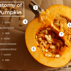 Parts Of A Pumpkin Diagram 3 Gang Switch Wiring Uk How To Buy And Store Pumpkins For Cooking 43 Recipes