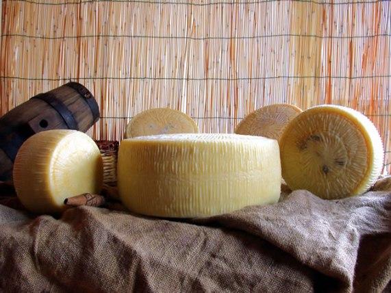pecorino di forenza formaggio di pecora formaggio latte di pecora azienda agricola caggiano basilicata lucania