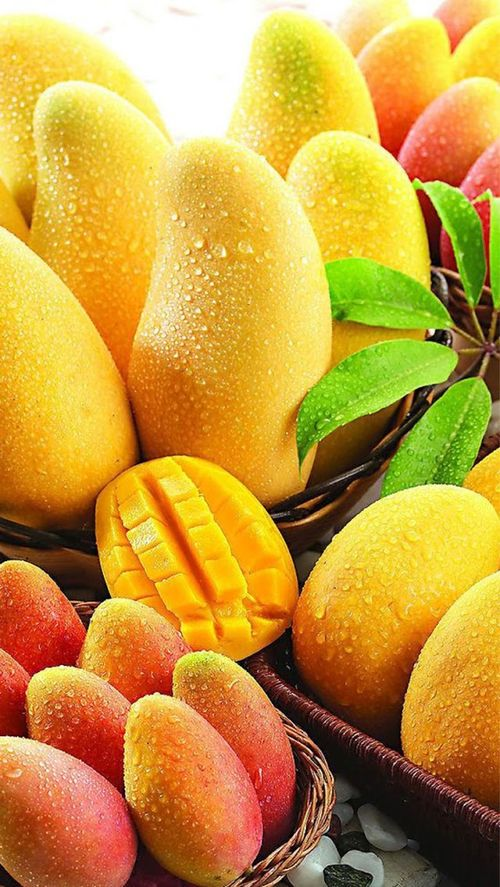 Mango Nutrition Facts You Must Know