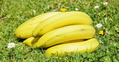 nutrition facts of bananas