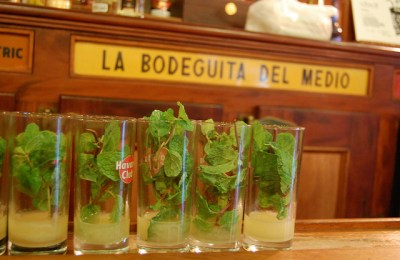 Dreaming in Cuban: The Story of Mojito