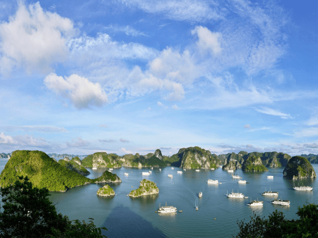 vietnam bamboo travel Packages