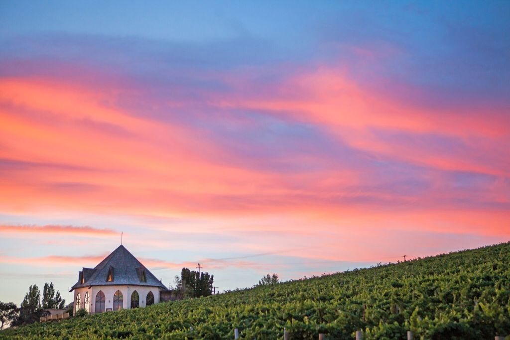 10 wineries from Idaho, United States you should know