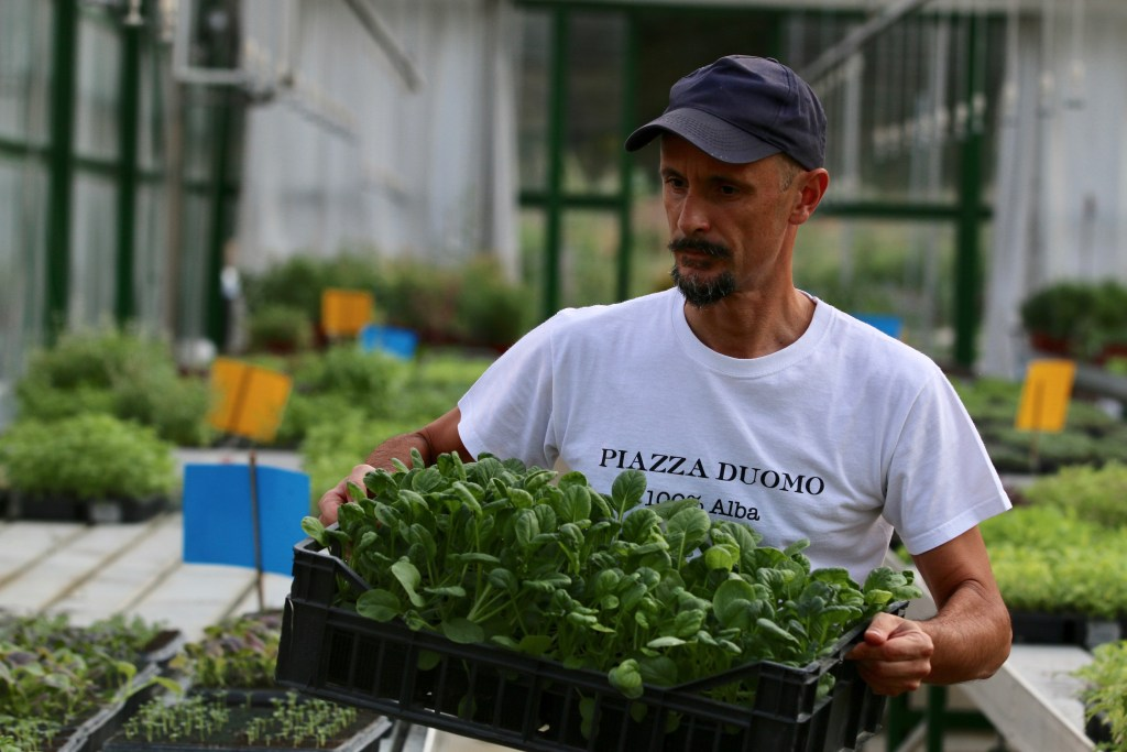 Inside the magical world of Enrico Crippa's garden is the secret to his legendary salad