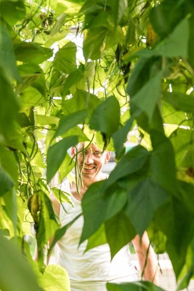 Blick auf Manfred Urban durch das Blätterdickicht