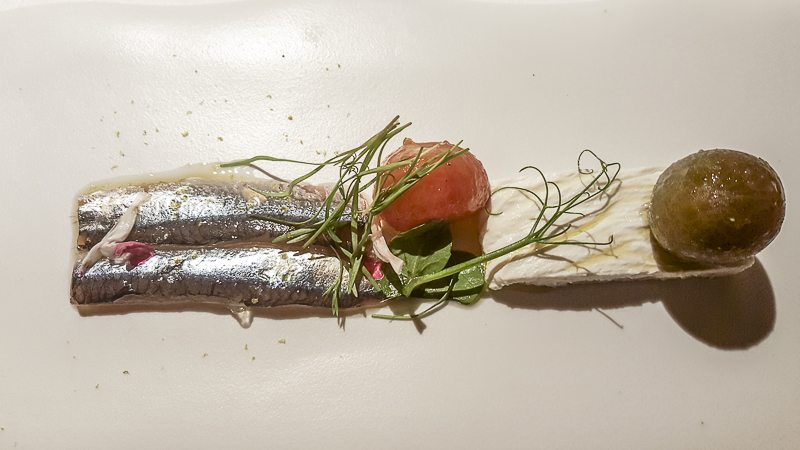 Recuit anchovy tomato Mercer