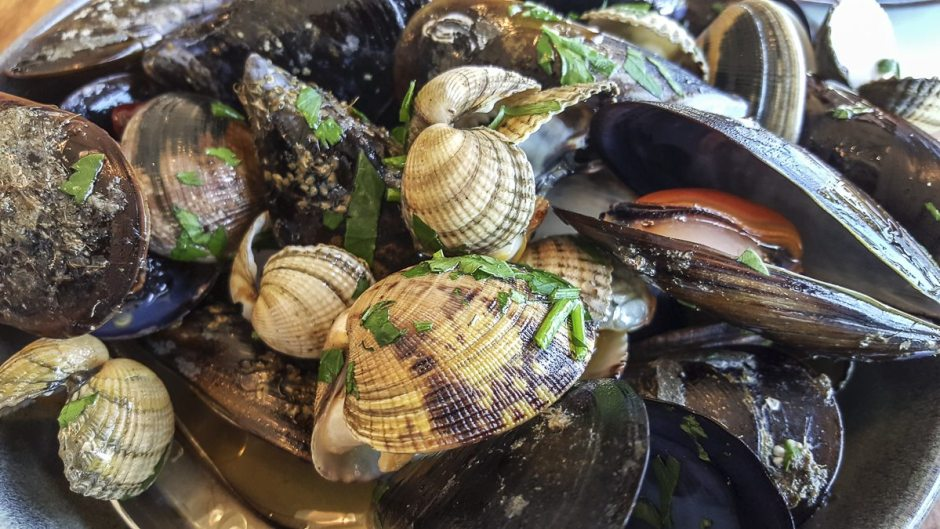 Shellfish Barraca