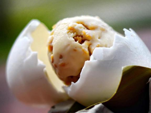 Crocodile-ice-cream