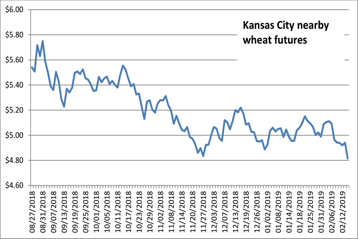 Kansas city wheat futures chart also grain soybean tumble   falls to contract lows rh foodbusinessnews