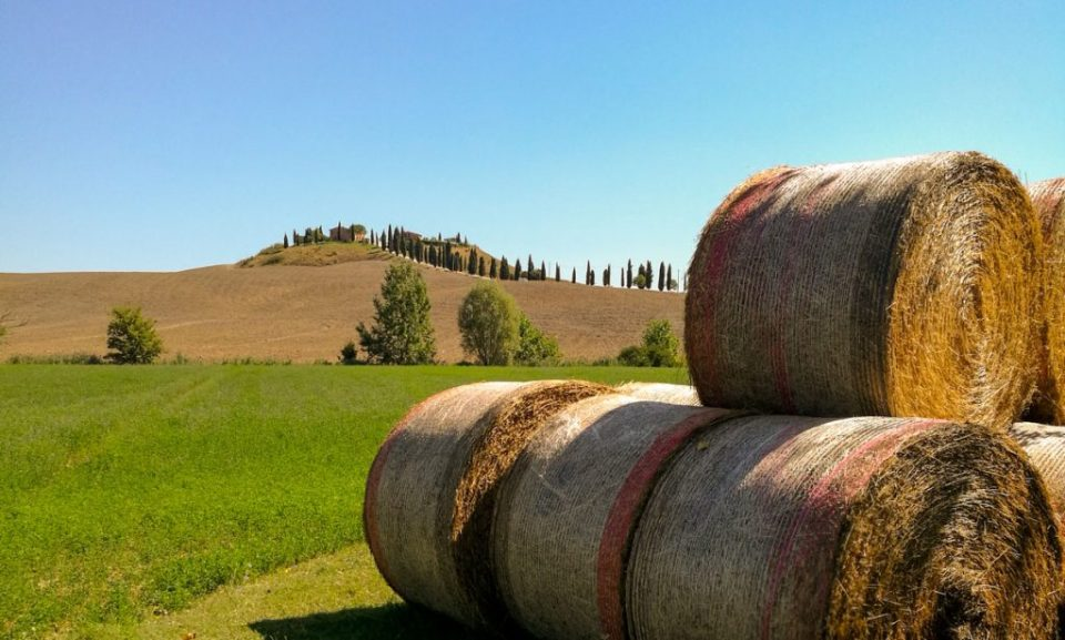 val d'orcia - agriturismo capanne ad asciano