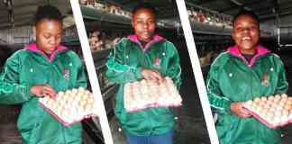 Young female farmer Mbalentle Sipingane, egg farmer of family business Manzoi Egg Farm.