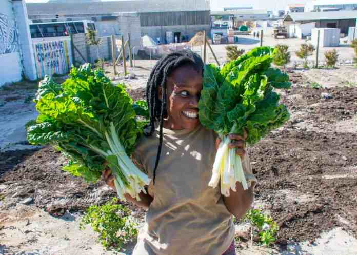 Zokhanyo Bikani is the farm supervisor at the Masakhane Community Farm in Gans. She dedicates herself to teach the community how to grow their own food.