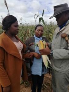 He dedicates himself to helping emerging farmers.