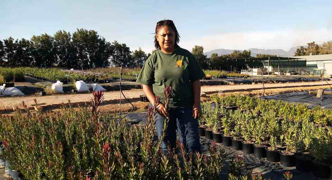 Jacky Goliath has dedicated most of her life to the business that she co-founded, De Fynne Nursery.