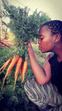 Mapheto started a farming project to create work for unemployed youth.
