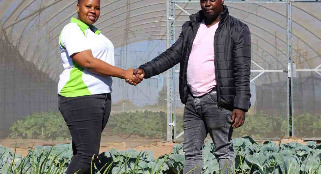 Young farmers Zanele Ntuli and Aaron Motau, both 29 years old, have a 6.2 hectare-farm in Winterveld that they use to feed over six thousand learners in seven schools around Gauteng and North West.