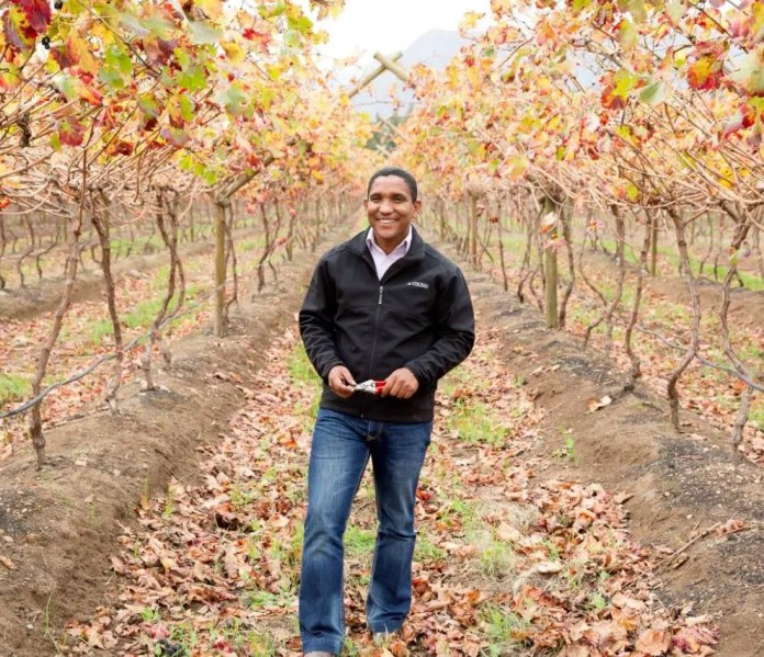 Warren started off by renting 12 hectares of vineyards from Lushof Farm. Today, he owns 37 hectares of tables grapes and has shares in two adjacent farms.