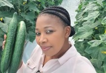 Ntando Thabethe (40) from KwaZulu-Natal is the owner of Elite Crop. A hydroponic agribusiness that started in her Pinetown backyard.