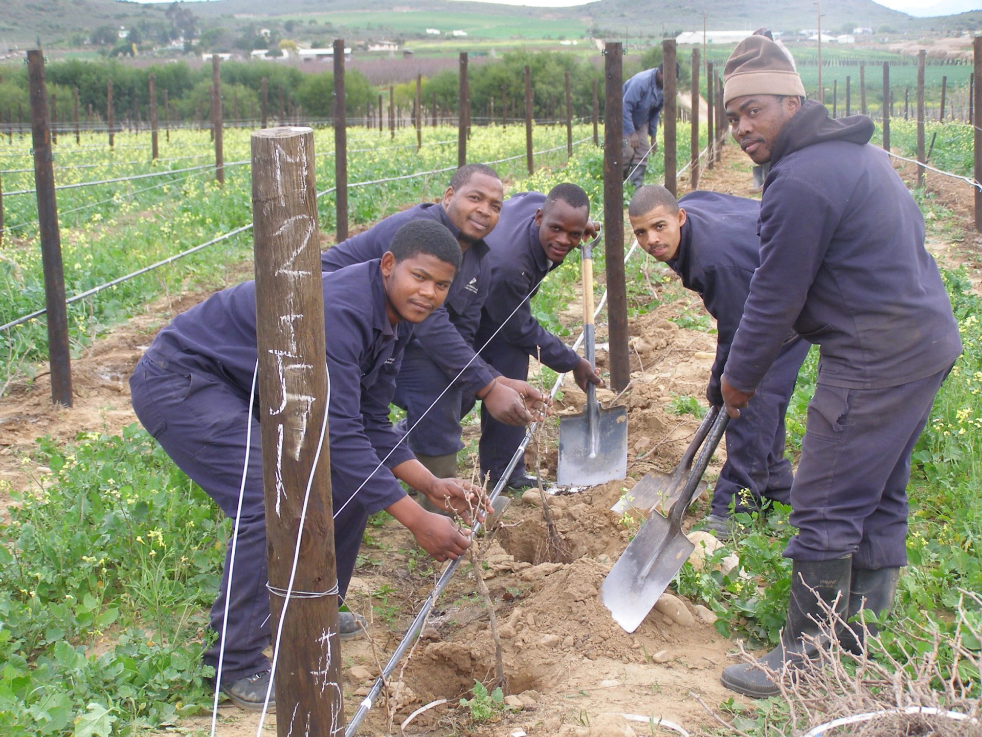 A brand-new, 100% black-owned and managed wine producer isbeingborn.