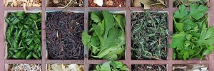 authentic, fraudulent, adulterated herbs
