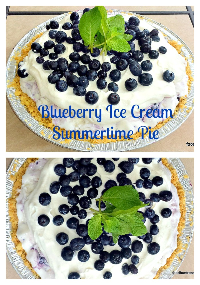 9 Blueberry Ice Cream Pie