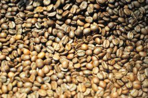 Gordon Street Coffee - roasted coffee bean close-up