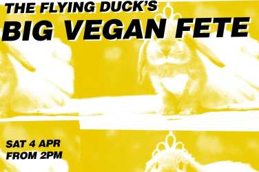 the flying duck big vegan fete