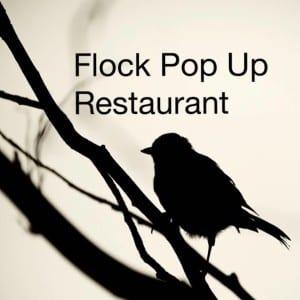 flock pop up john traynor seb & milli