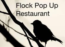 Preview: Flock Pop Up