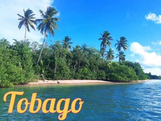 Carribean life – learning to 'lime' in Tobago