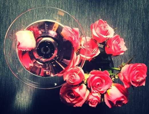 Rose martini gin cocktail Fentimans rose Lemonade The Botanist Gin