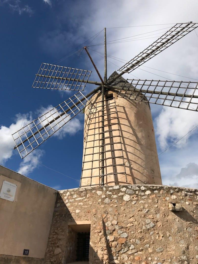 Palma Windmill