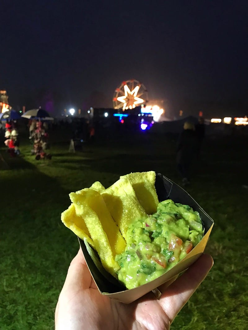 Electric Fields Music Festival Galloway Scotland Food