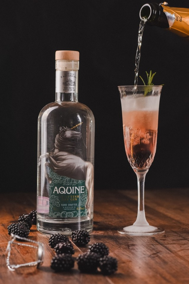 Blackberry fizz cocktail Lidl aquine gin