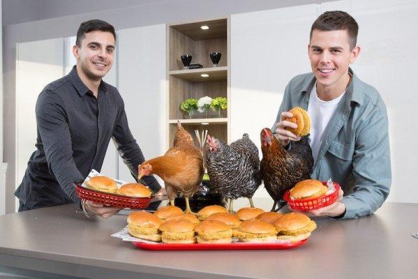 DARING Foods vegan food - Launch (1)