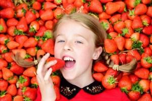 Scotty Brand scottish strawberries