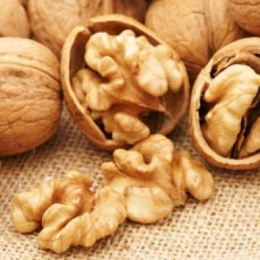 CHILEAN WALNUT INDUSTRY