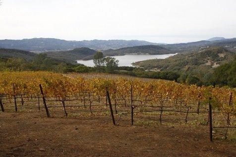 napa valley wijn