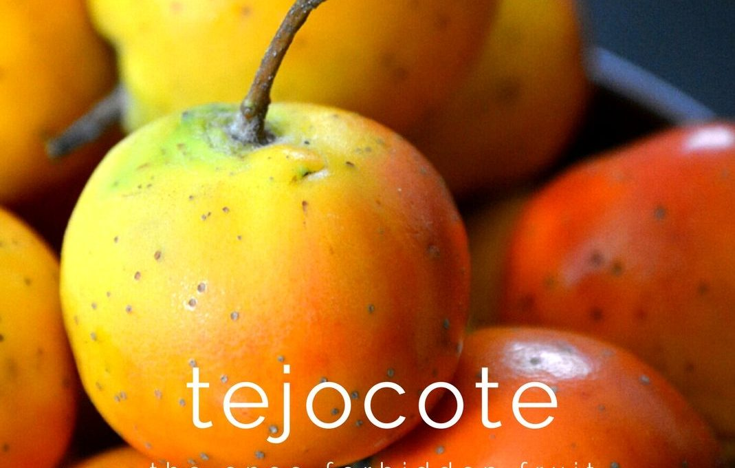 Tejocote: A Little Well-Known Mexican Delicacy | Food is Vida