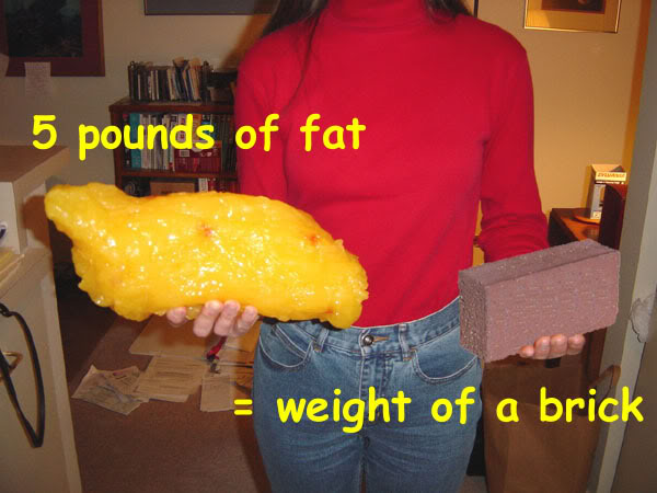 What 5 pounds of fat looks like