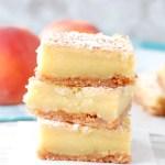 http://www.foodlovinfamily.com/peach-nectar-custard-bars/