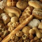 Il mondo del pane ed Erbe spontanee a tavola