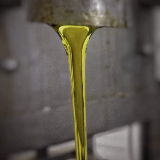 landini_estrazione olio