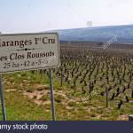 """La Borgogna del sud: il Domaine des Rouges Queues e il Premier Cru """"Clos Roussots"""""""
