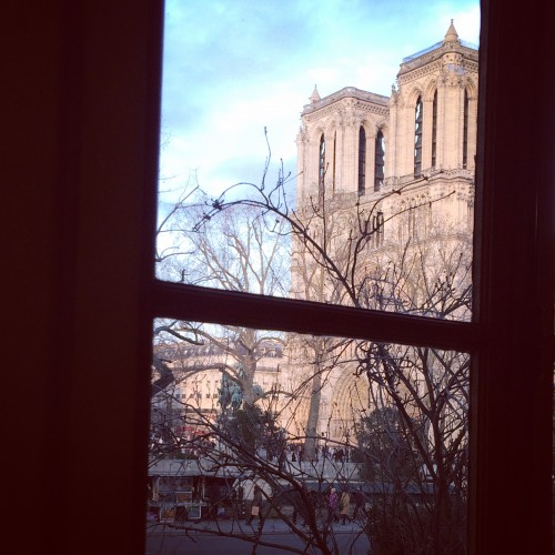 View from Shakespeare and Company Book Shop in Paris