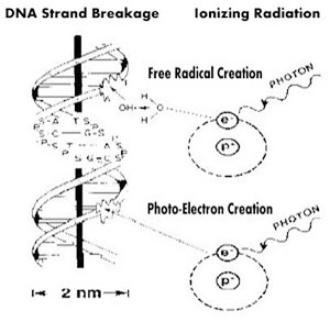 Ionizing Radiation: May 2015