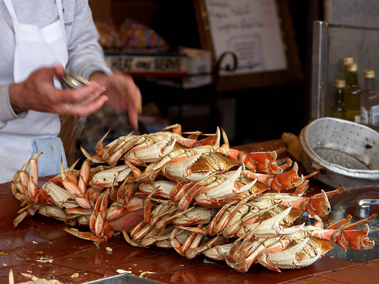 10 Things You Should Know About Dungeness Crab, Currently In
