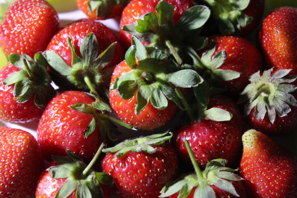 14 Things You Didn T Know About Strawberries Food Republic