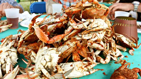 Summertime means blue crabs are on the menu!