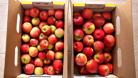 What's In Season In Early October: Sweet Potatoes, Aged Cheeses, Honeycrisp Apples